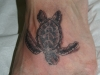 turtletattoo_misc-46